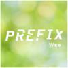 -Prefix-