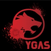 YgaS